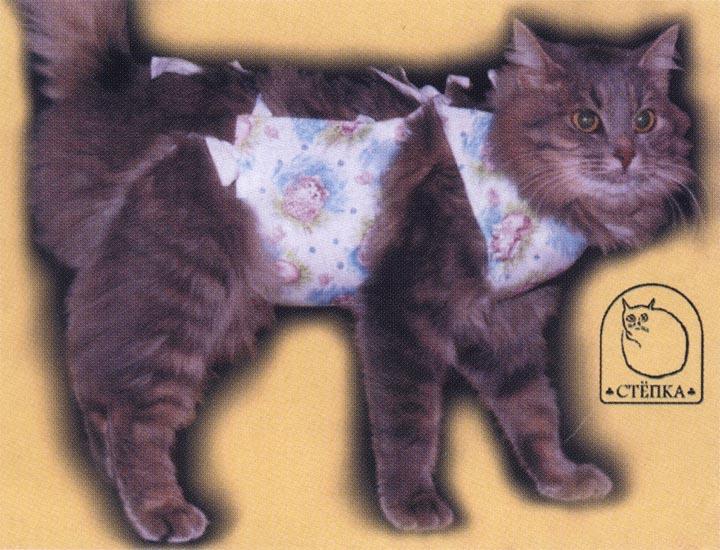 Как сделать попону кошке после стерилизации